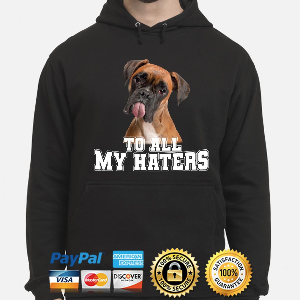 Boxer to all my hater s hoodie