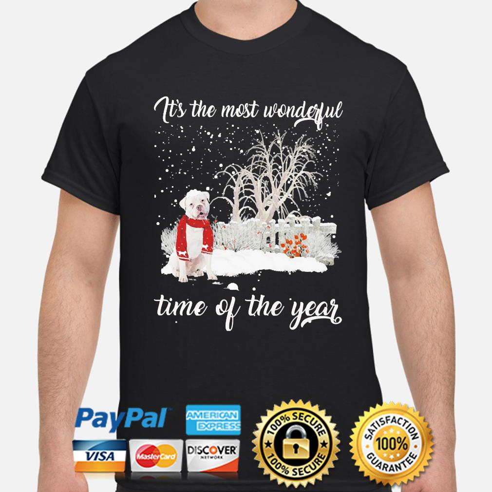 English Bulldog it's the most wonderful time if the year christmas sweater