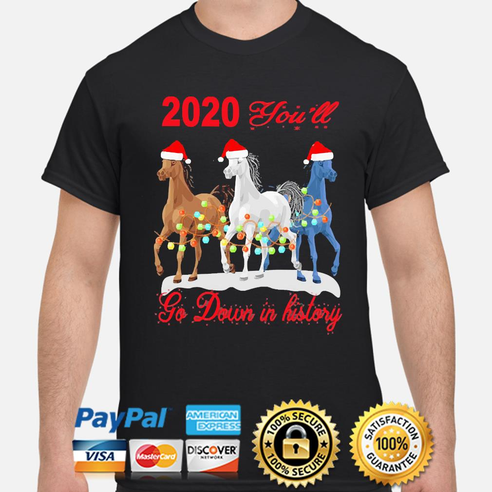 Horse 2020 you'll go down in history Christmas sweater